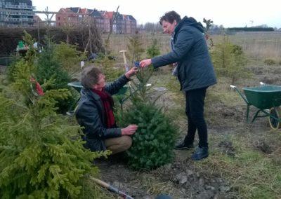 Vrij Groen – tuin in Leiden en Oegstgeest