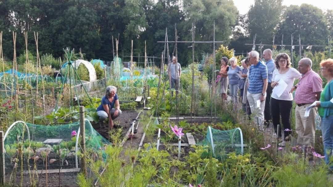 Cursus Ecologische Moestuin voor Velt