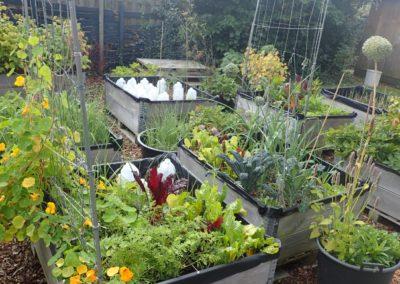 Advies over bodemverontreiniging in een buurttuin