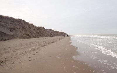 Bodem in het wild: kustafslag en -aangroei op Goeree
