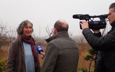 Je groene project in de media: tips voor je persbericht